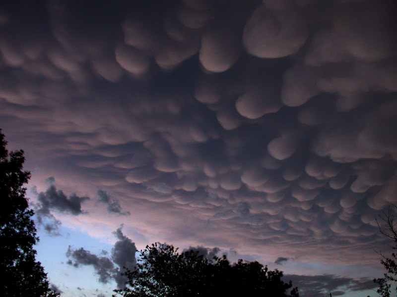 http://cacophobia.files.wordpress.com/2009/07/mammatus.jpg
